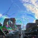 Miss Bubbles